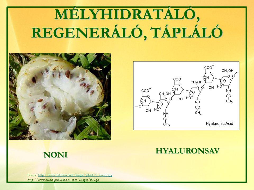MÉLYHIDRATÁLÓ, REGENERÁLÓ, TÁPLÁLÓ NONI HYALURONSAV Forrás: http://www.hilozoo.com/images/plants/t_noni2.jpghttp://www.hilozoo.com/images/plants/t_non