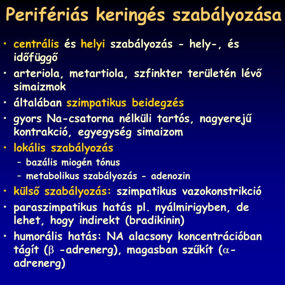 Perifériás keringés szabályozása centrális és helyi szabályozás - hely-, és időfüggő arteriola, metartiola, szfinkter területén lévő simaizmok általában szimpatikus beidegzés gyors Na-csatorna nélküli tartós, nagyerejű kontrakció, egyegység simaizom lokális szabályozás –bazális miogén tónus –metabolikus szabályozás - adenozin külső szabályozás: szimpatikus vazokonstrikció paraszimpatikus hatás pl.