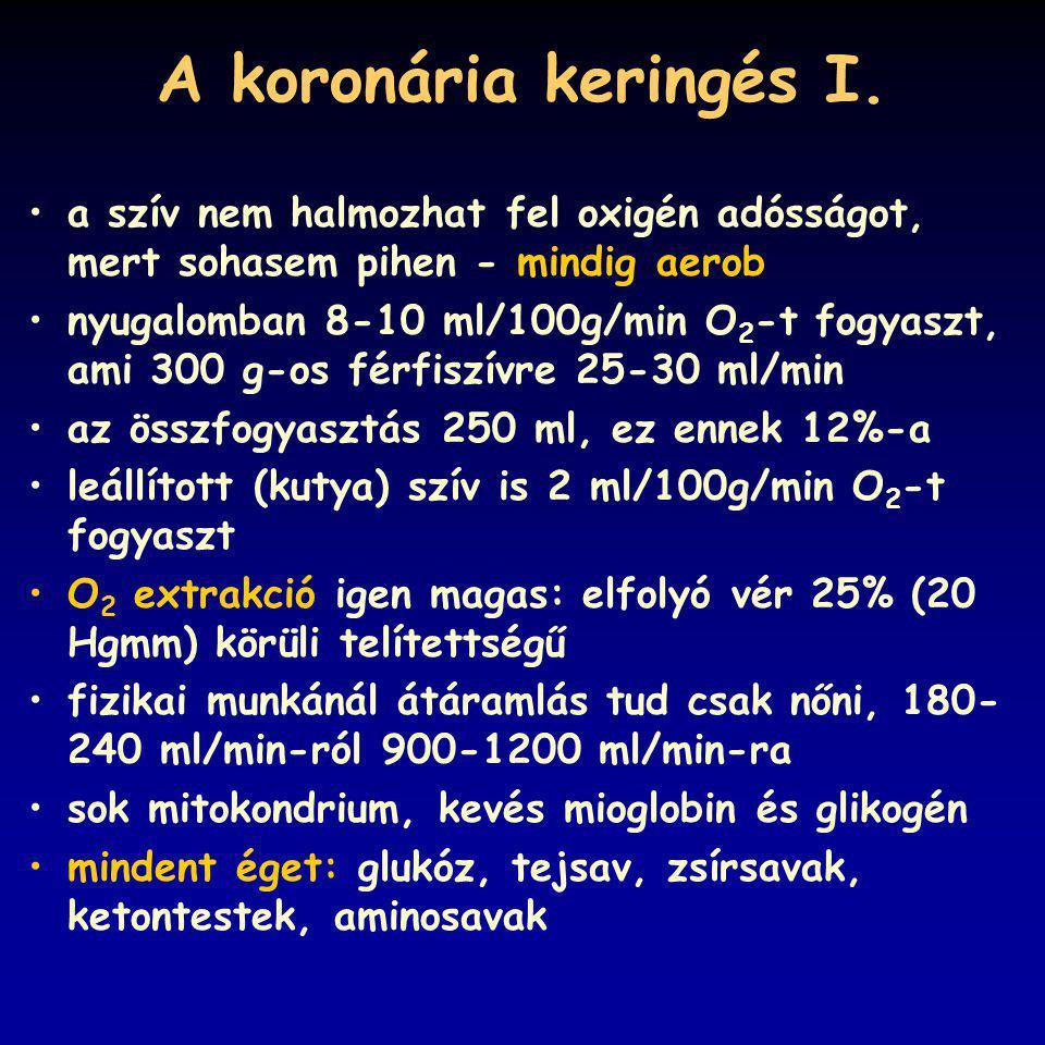 A koronária keringés I.