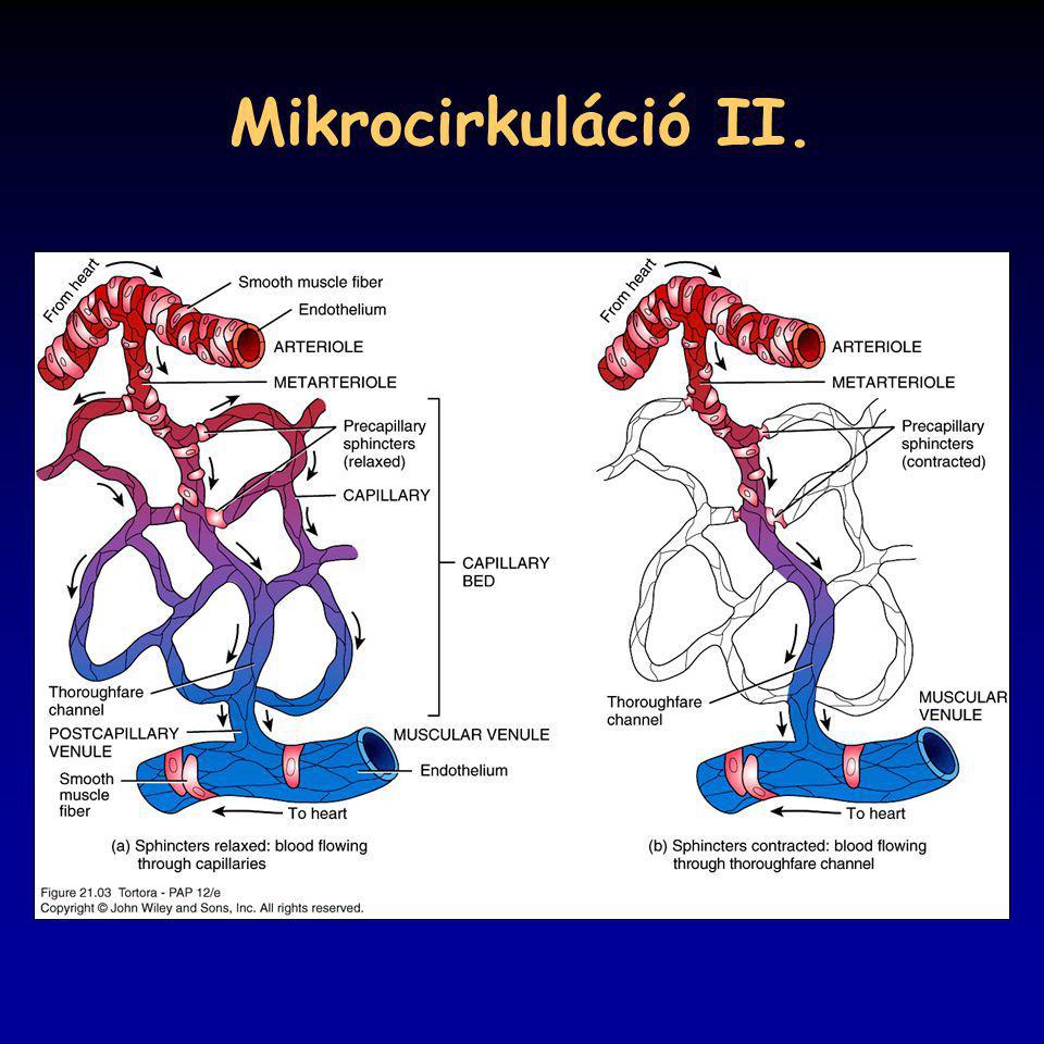 Mikrocirkuláció II.