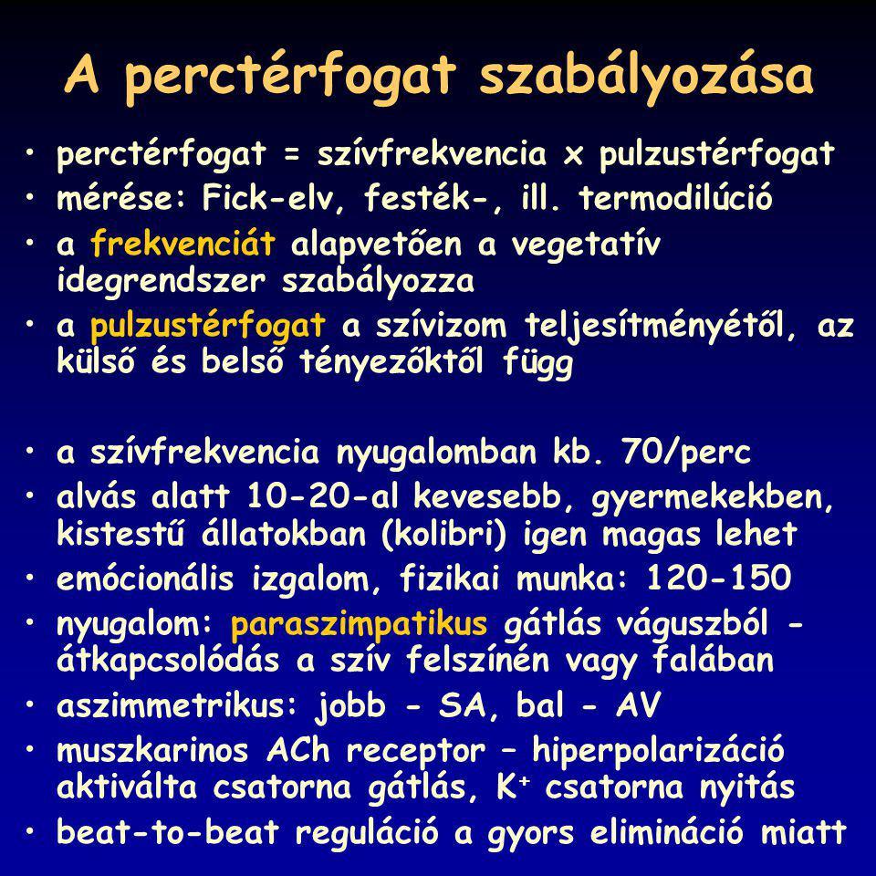 A perctérfogat szabályozása perctérfogat = szívfrekvencia x pulzustérfogat mérése: Fick-elv, festék-, ill.