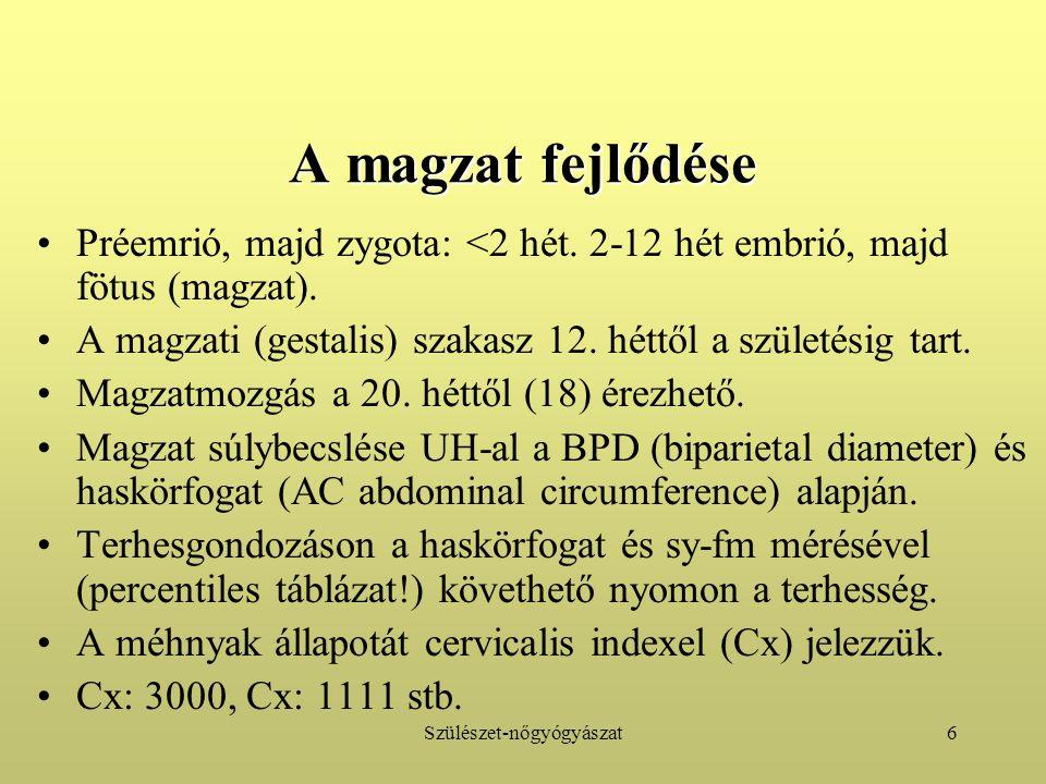 Szülészet-nőgyógyászat6 A magzat fejlődése Préemrió, majd zygota: <2 hét. 2-12 hét embrió, majd fötus (magzat). A magzati (gestalis) szakasz 12. héttő