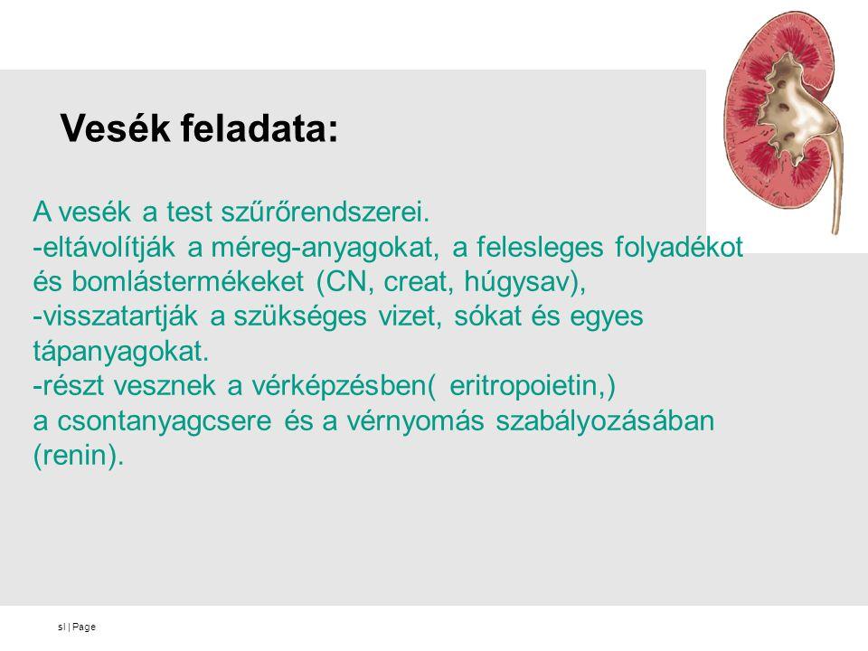 sl   Page Felmérés eredményei: Betegek életkor szerinti megoszlása 25 Betegek családi állapot szerinti megoszlása