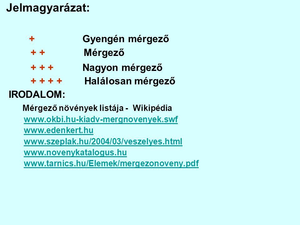 MAGYAL(Ilex aquifolium) + + + Mérgező: bogyó.Hatóanyagok: alkaloidok, antocianin, ursolsav.