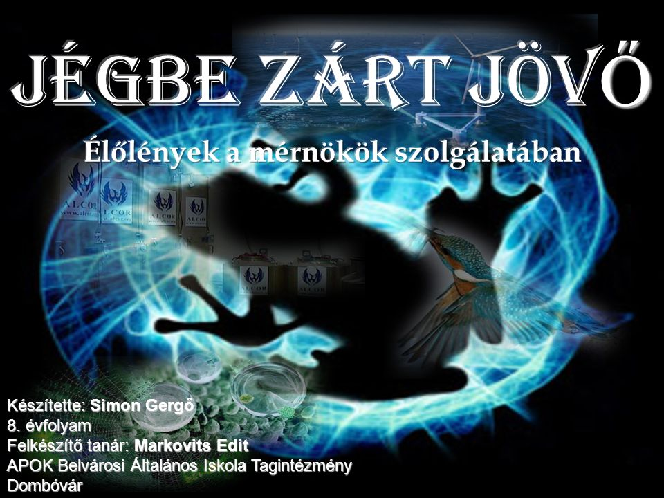 Készítette: Simon Gergő 8. évfolyam Felkészítő tanár: Markovits Edit APOK Belvárosi Általános Iskola Tagintézmény Dombóvár