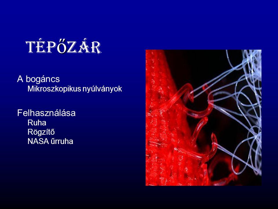 ő Tép ő zár A bogáncs Mikroszkopikus nyúlványok Felhasználása Ruha Rögzítő NASA űrruha