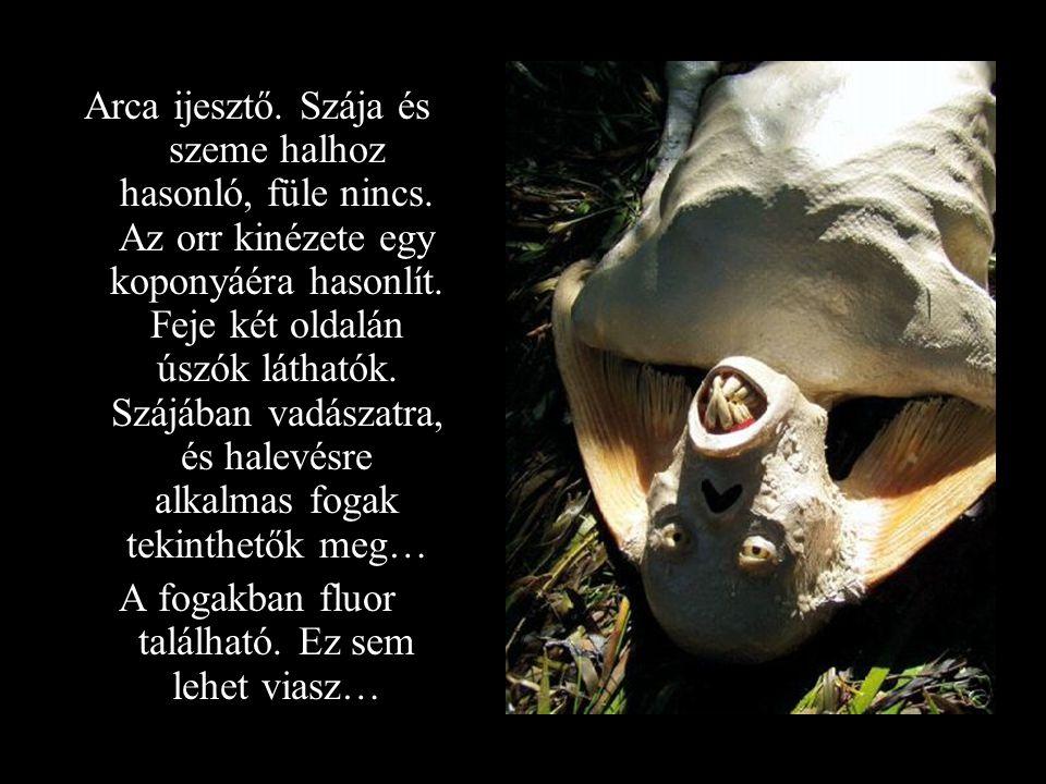 Arca ijesztő. Szája és szeme halhoz hasonló, füle nincs. Az orr kinézete egy koponyáéra hasonlít. Feje két oldalán úszók láthatók. Szájában vadászatra
