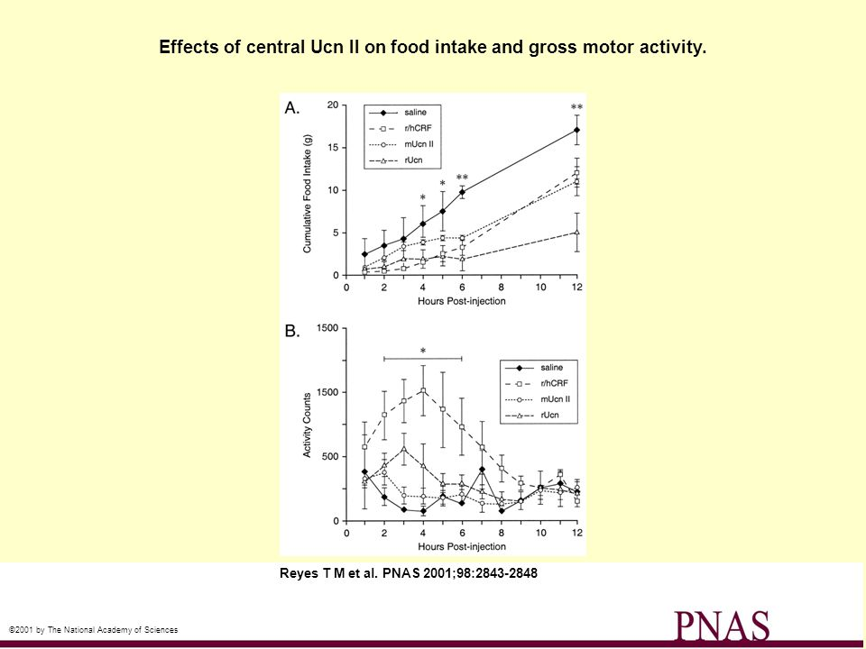 Effects of central Ucn II on food intake and gross motor activity. Reyes T M et al. PNAS 2001;98:2843-2848 ©2001 by The National Academy of Sciences