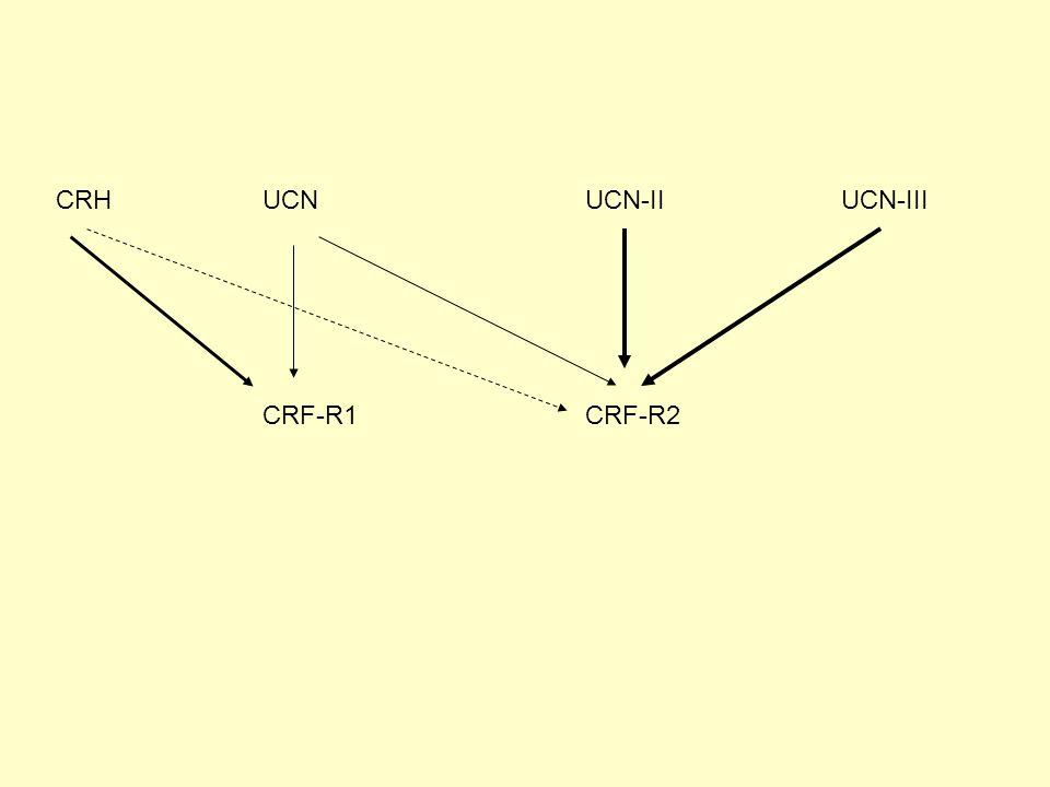 CRHUCNUCN-IIUCN-III CRF-R1CRF-R2