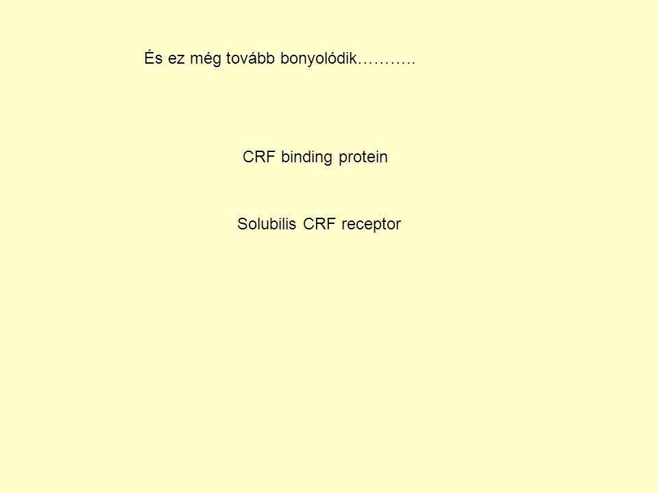 És ez még tovább bonyolódik……….. CRF binding protein Solubilis CRF receptor