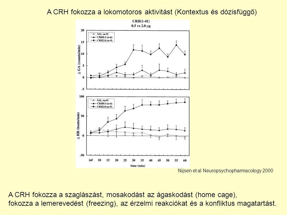 A CRH fokozza a lokomotoros aktivitást (Kontextus és dózisfüggő) Nijsen et al Neuropsychopharmacology 2000 A CRH fokozza a szaglászást, mosakodást az ágaskodást (home cage), fokozza a lemerevedést (freezing), az érzelmi reakciókat és a konfliktus magatartást.