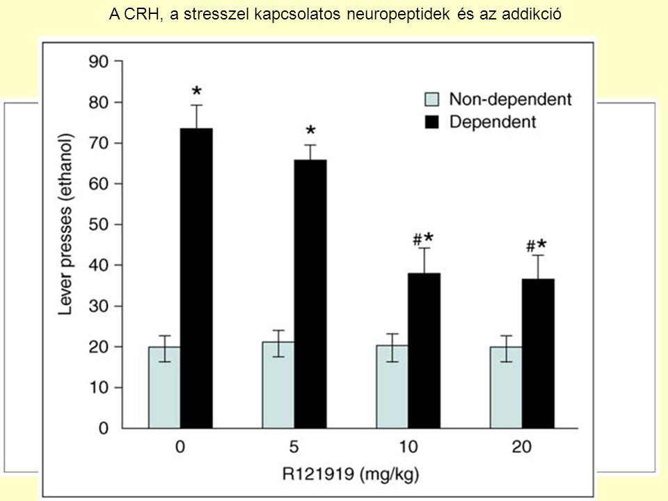 A CRH, a stresszel kapcsolatos neuropeptidek és az addikció