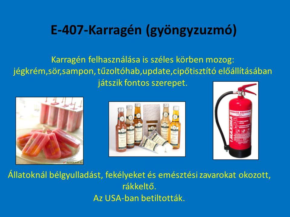E-407-Karragén (gyöngyzuzmó) Karragén felhasználása is széles körben mozog: jégkrém,sör,sampon, tűzoltóhab,update,cipőtisztító előállításában játszik