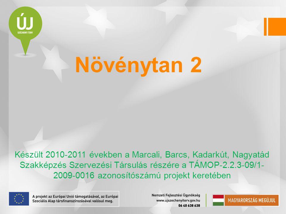 Növénytan 2 Készült 2010-2011 években a Marcali, Barcs, Kadarkút, Nagyatád Szakképzés Szervezési Társulás részére a TÁMOP-2.2.3-09/1- 2009-0016 azonos