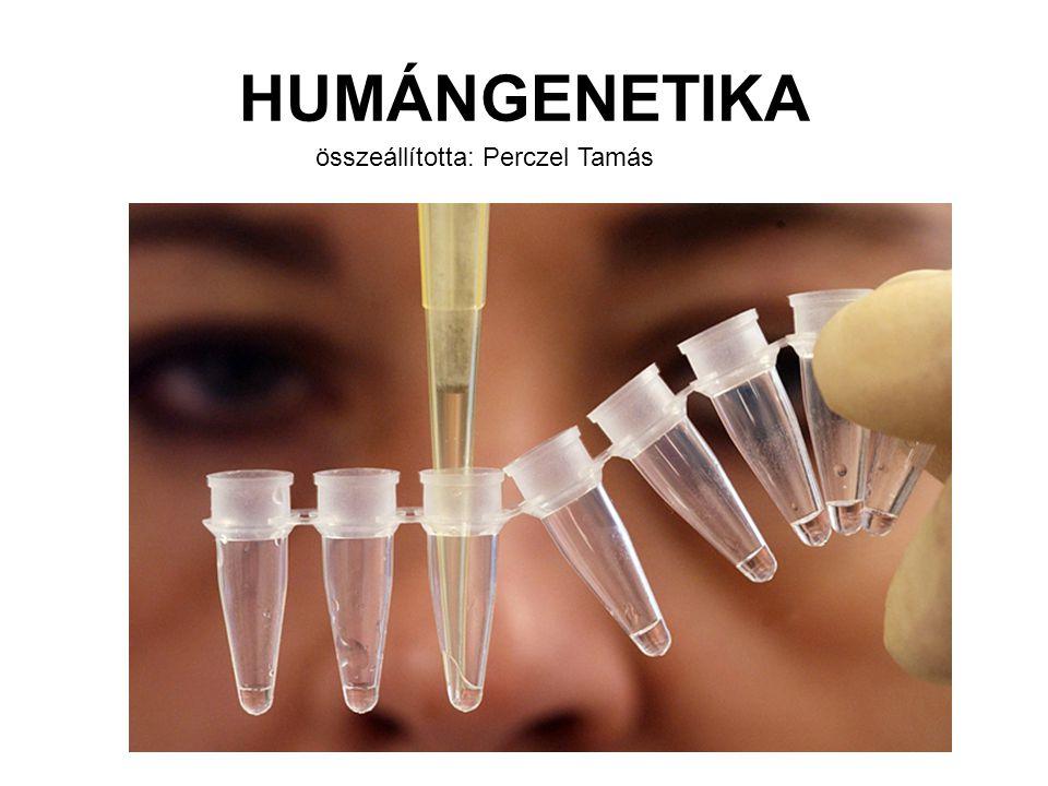 """Kutatások az örökletes betegségek felderítésére és kezelésére géntérképezés DNS elemzéssel PCR technika a kis mennyiségű DNS felszaporítására DNS chipek a gének azonosítására génterápia: célja lehet javítás: a sérült gén aktivitásának gátlása, a gyógyító gén bejuttatása, vagy pusztítás: tumorsejtek vagy vírus-fertőzött sejtek célzott megsemmisítése, érzékenyítő vagy """"suicide gének bejuttatásával, immunomodulációval őssejtterápia John Gurdon és Shinya Yamanaka 2012-es Nobel-díja saját testi sejtek """"mindent tudó őssejté alakításáért"""