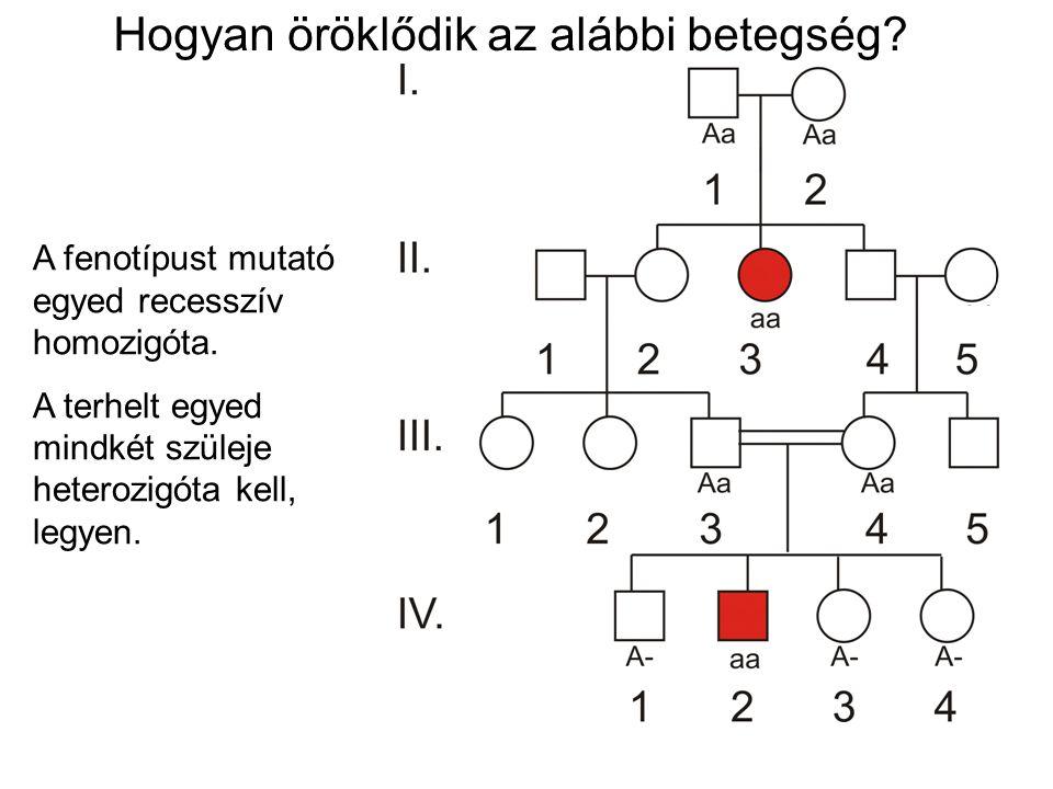 A fenotípust mutató egyed recesszív homozigóta. A terhelt egyed mindkét szüleje heterozigóta kell, legyen. Hogyan öröklődik az alábbi betegség?
