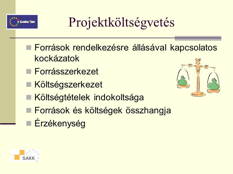 Projektek pénzügyi értékelése Két szempont A projekt- költségvetés realitása Pénzügyi megvalósíthatóság, megtérülés