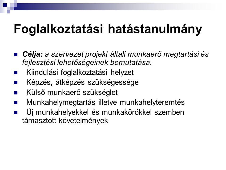 Foglalkoztatási hatástanulmány Célja: a szervezet projekt általi munkaerő megtartási és fejlesztési lehetőségeinek bemutatása. Kiindulási foglalkoztat