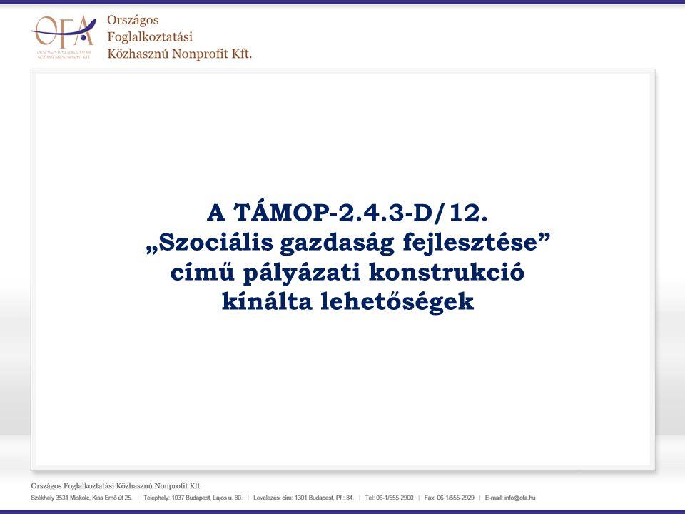 """A TÁMOP-2.4.3-D/12. """"Szociális gazdaság fejlesztése"""" című pályázati konstrukció kínálta lehetőségek"""