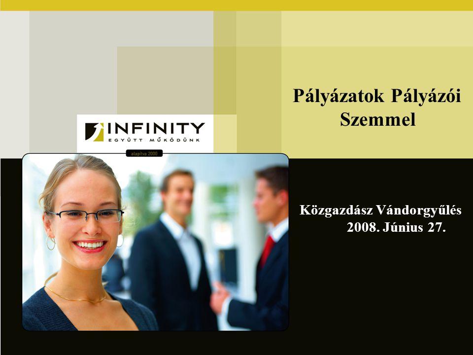 Pályázatok Pályázói Szemmel Közgazdász Vándorgyűlés 2008. Június 27.