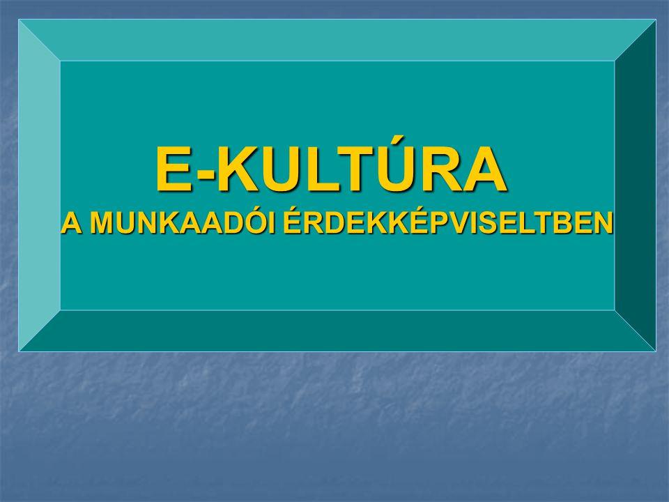 E-KULTÚRA A MUNKAADÓI ÉRDEKKÉPVISELTBEN