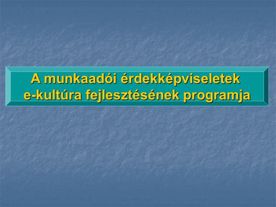 A munkaadói érdekképviseletek e-kultúra fejlesztésének programja