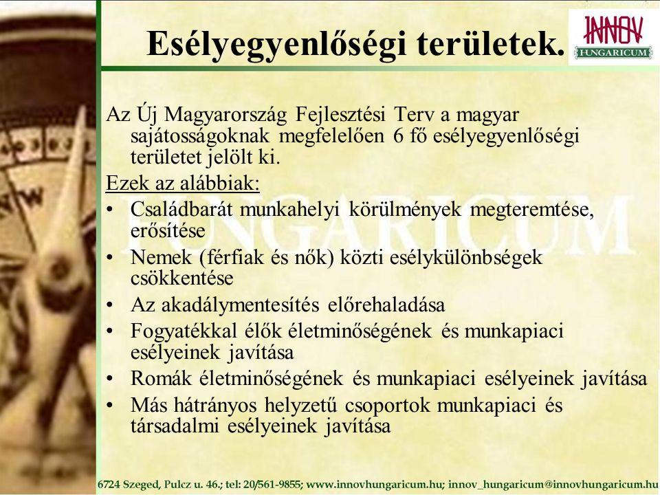 Esélyegyenlőségi területek. Az Új Magyarország Fejlesztési Terv a magyar sajátosságoknak megfelelően 6 fő esélyegyenlőségi területet jelölt ki. Ezek a