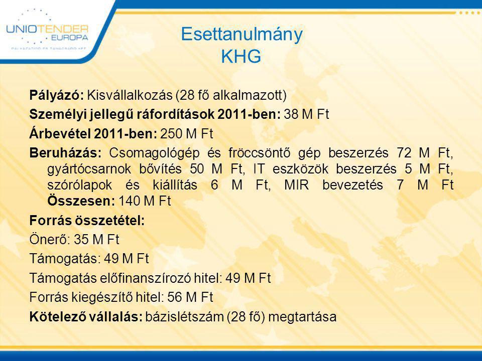 Esettanulmány KHG Pályázó: Kisvállalkozás (28 fő alkalmazott) Személyi jellegű ráfordítások 2011-ben: 38 M Ft Árbevétel 2011-ben: 250 M Ft Beruházás: