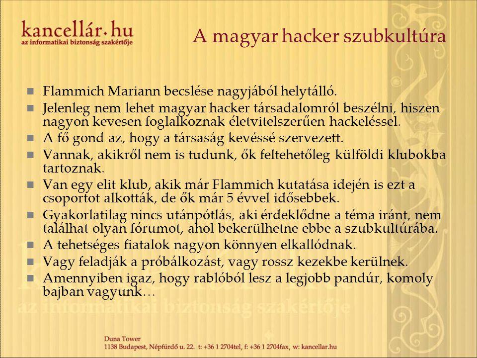 A magyar hacker szubkultúra Flammich Mariann becslése nagyjából helytálló. Jelenleg nem lehet magyar hacker társadalomról beszélni, hiszen nagyon keve