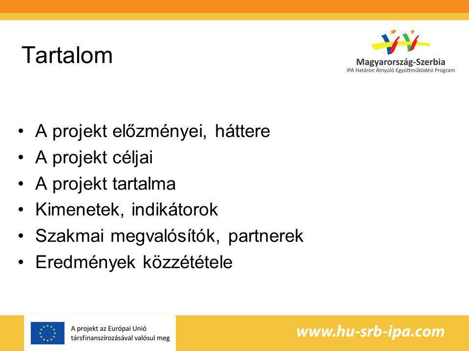 Tartalom A projekt előzményei, háttere A projekt céljai A projekt tartalma Kimenetek, indikátorok Szakmai megvalósítók, partnerek Eredmények közzététele