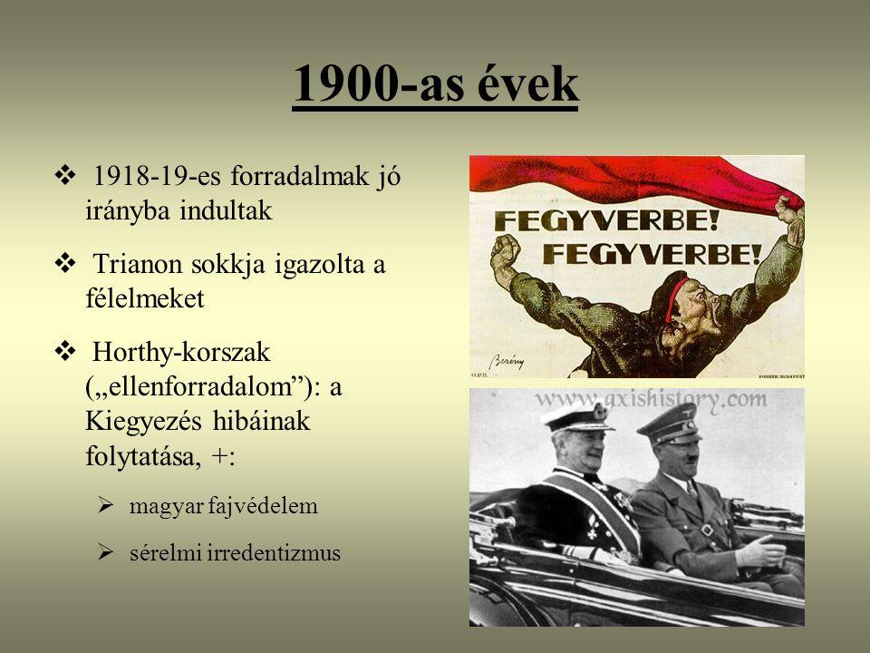 """1900-as évek  1918-19-es forradalmak jó irányba indultak  Trianon sokkja igazolta a félelmeket  Horthy-korszak (""""ellenforradalom ): a Kiegyezés hibáinak folytatása, +:  magyar fajvédelem  sérelmi irredentizmus"""