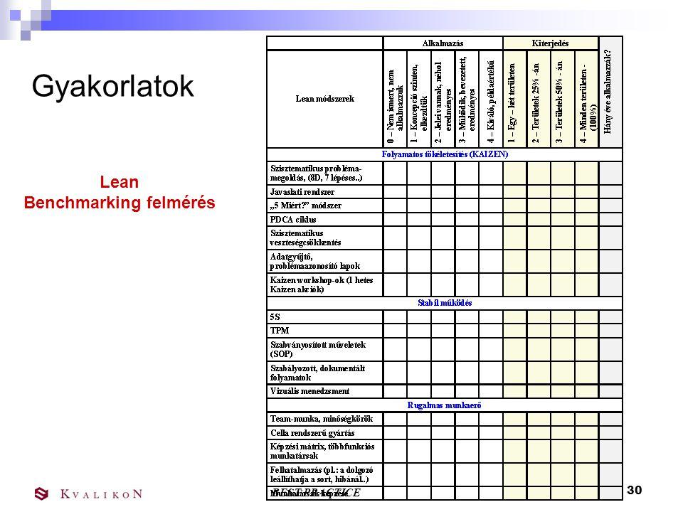 BEST PRACTICE 29 Gyakorlatok Lean Benchmarking felmérés