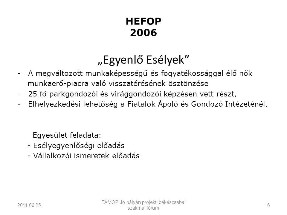 """HEFOP 2006 """"Egyenlő Esélyek -A megváltozott munkaképességű és fogyatékossággal élő nők munkaerő-piacra való visszatérésének ösztönzése -25 fő parkgondozói és virággondozói képzésen vett részt, -Elhelyezkedési lehetőség a Fiatalok Ápoló és Gondozó Intézeténél."""