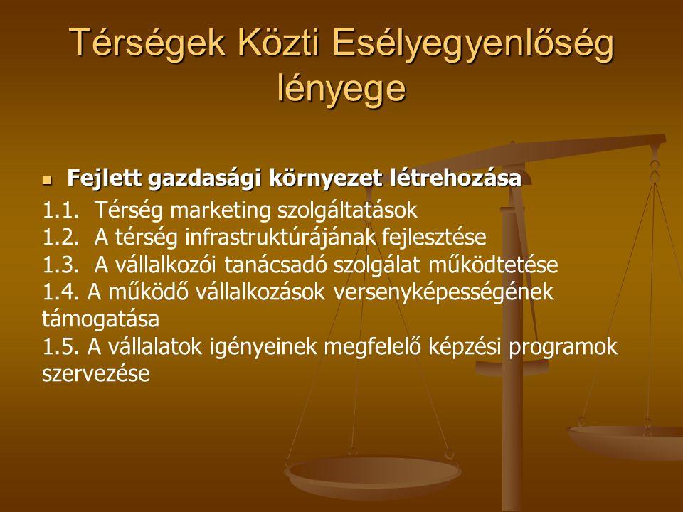 A térségi és térségek közötti partneri kapcsolatok létrehozása és működése I.