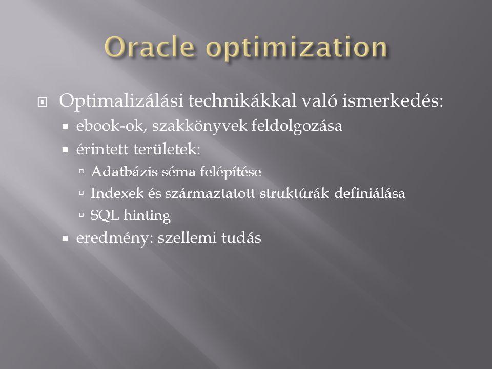  Optimalizálási technikákkal való ismerkedés:  ebook-ok, szakkönyvek feldolgozása  érintett területek:  Adatbázis séma felépítése  Indexek és szá
