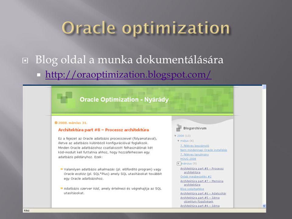  Blog oldal a munka dokumentálására  http://oraoptimization.blogspot.com/ http://oraoptimization.blogspot.com/