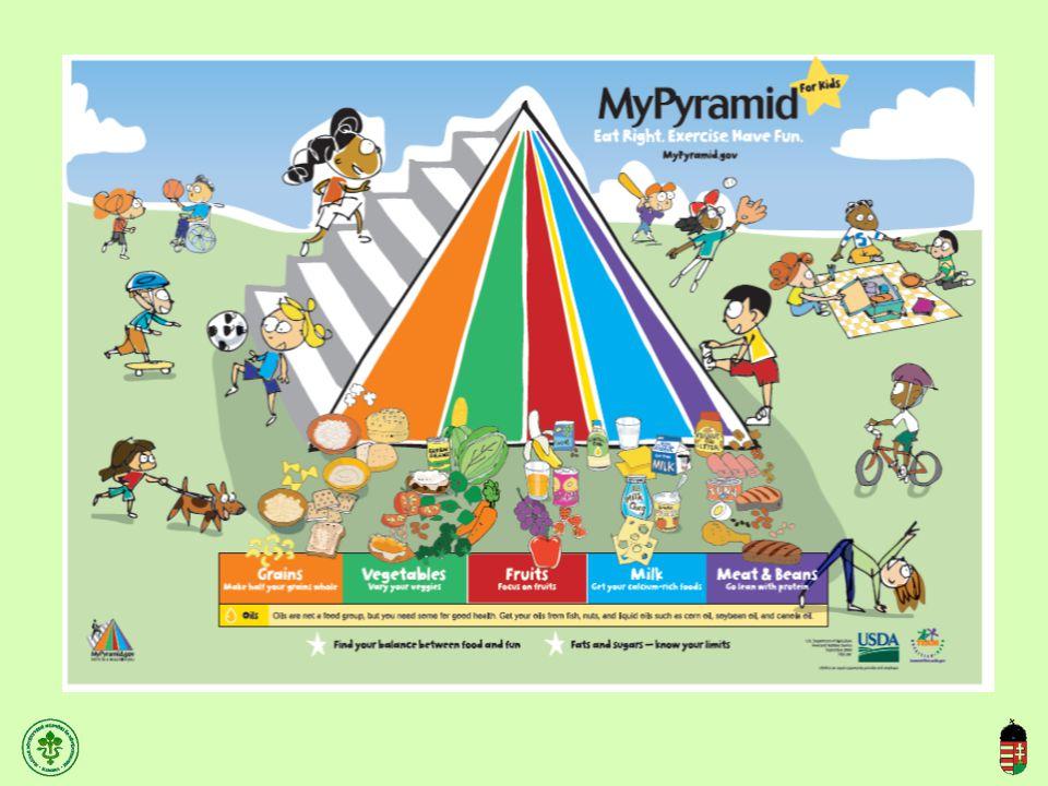 (Kajati I.,2006) A gyümölcs vertikum élelmiszerbiztonsági piramisa