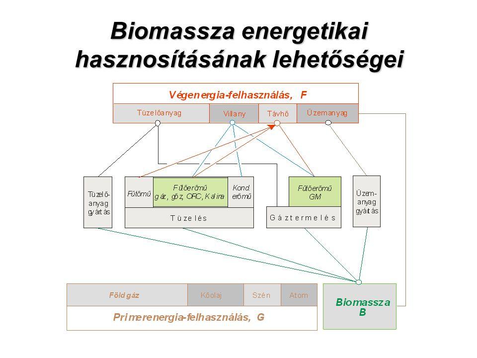 Biomassza energetikai hasznosításának lehetőségei