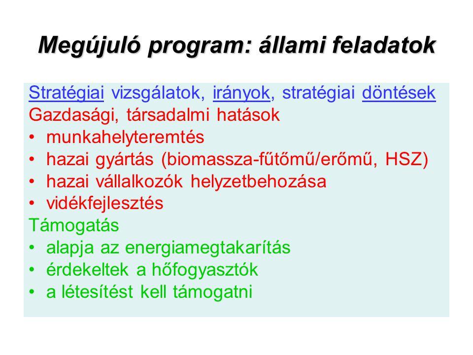 Megújuló program: állami feladatok Stratégiai vizsgálatok, irányok, stratégiai döntések Gazdasági, társadalmi hatások munkahelyteremtés hazai gyártás