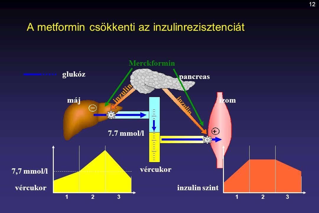 12 pancreas izommáj vércukor 7.7 mmol/l inzulin glukóz vércukor 7,7 mmol/l 1 inzulin szint 122 A metformin csökkenti az inzulinrezisztenciát 33 Merckf
