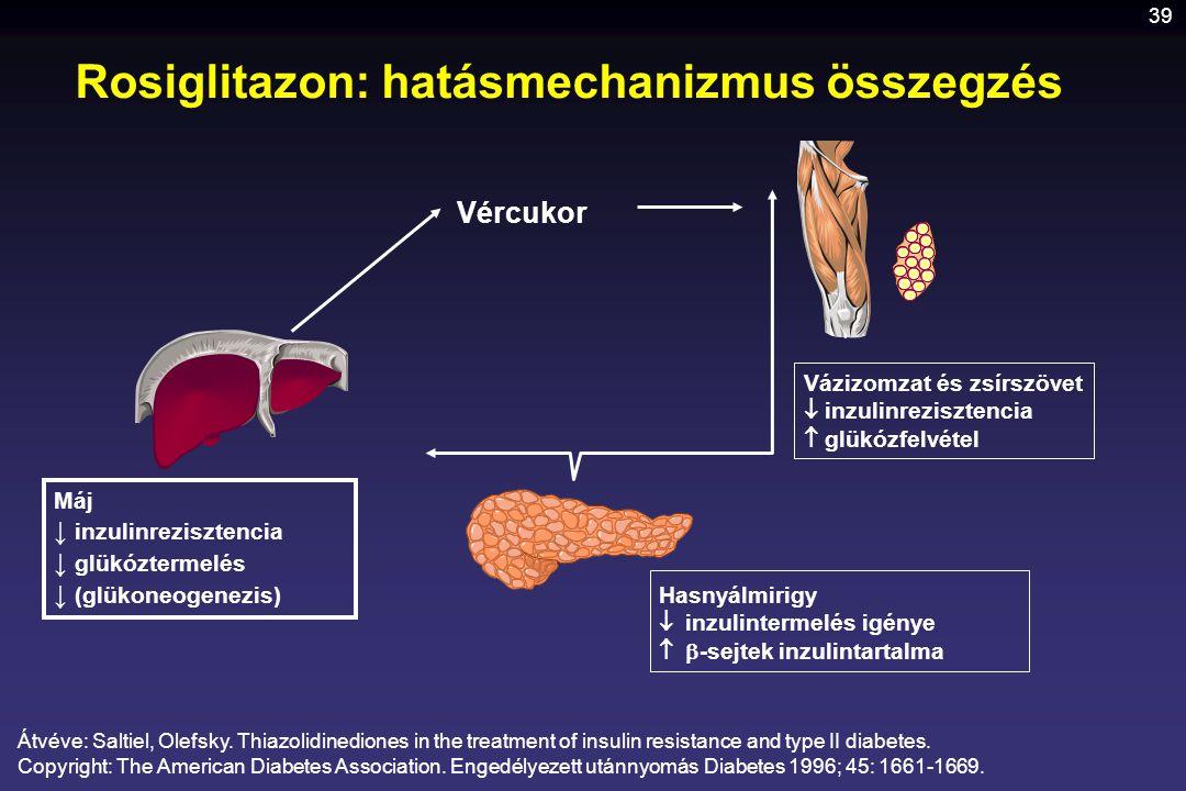 39 Rosiglitazon: hatásmechanizmus összegzés Vázizomzat és zsírszövet  inzulinrezisztencia  glükózfelvétel Máj ↓ inzulinrezisztencia ↓ glükóztermelés