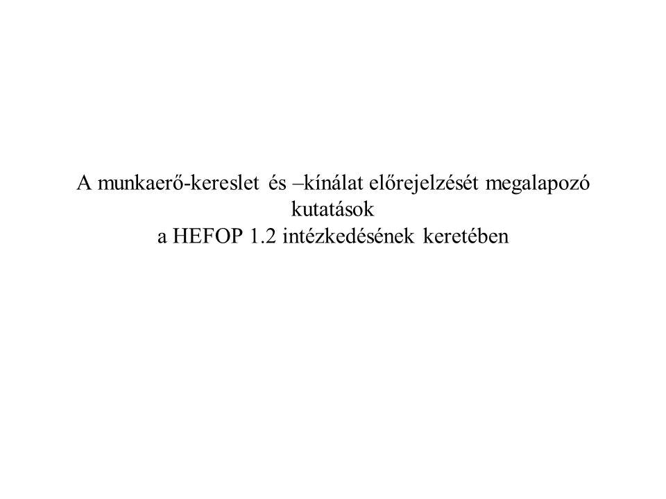 A munkaerő-kereslet és –kínálat előrejelzését megalapozó kutatások a HEFOP 1.2 intézkedésének keretében