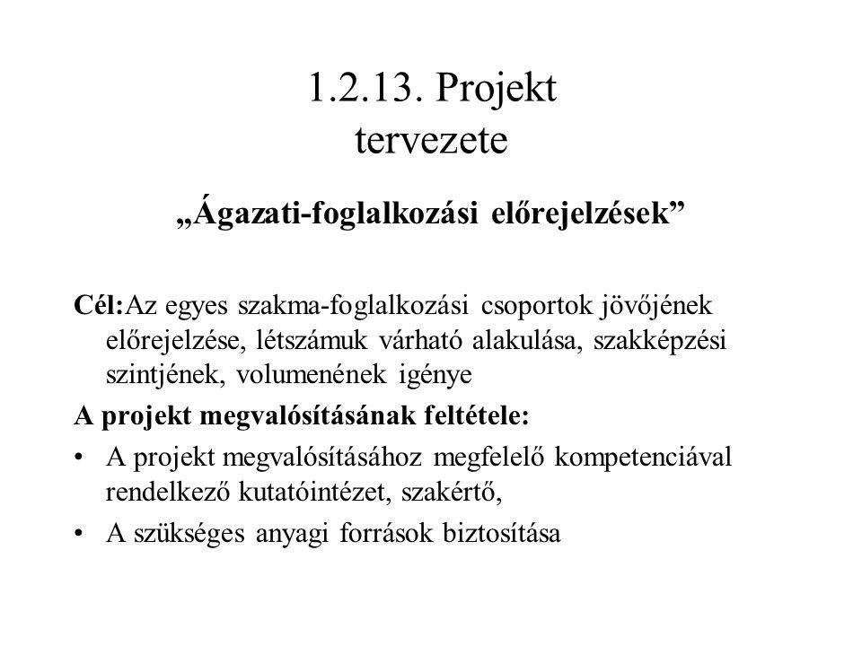 """1.2.13. Projekt tervezete """"Ágazati-foglalkozási előrejelzések"""" Cél:Az egyes szakma-foglalkozási csoportok jövőjének előrejelzése, létszámuk várható al"""