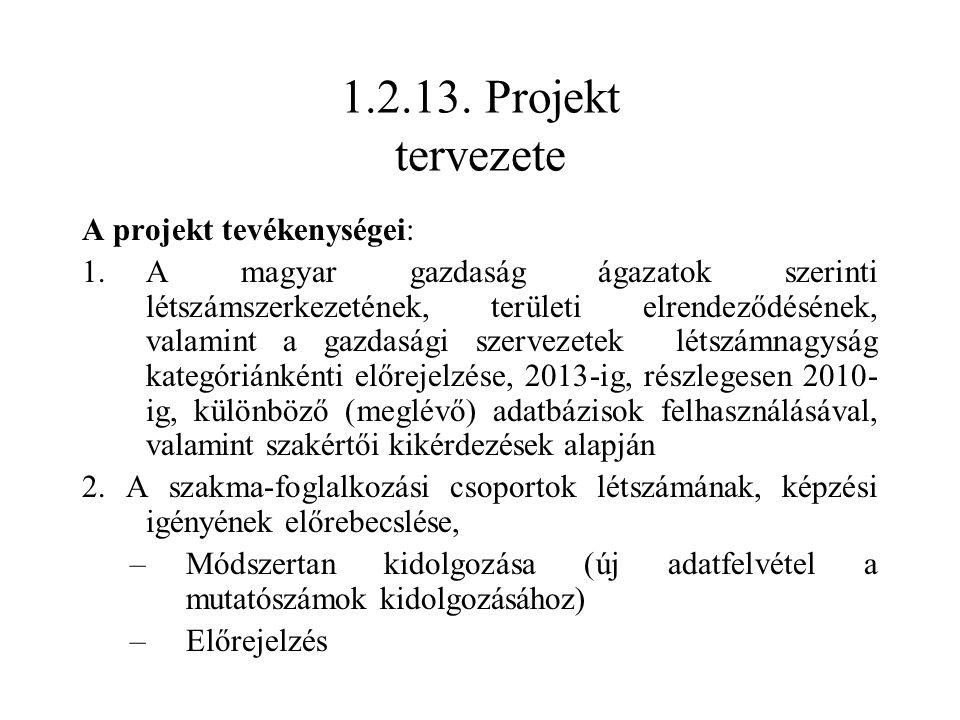 1.2.13. Projekt tervezete A projekt tevékenységei: 1.A magyar gazdaság ágazatok szerinti létszámszerkezetének, területi elrendeződésének, valamint a g