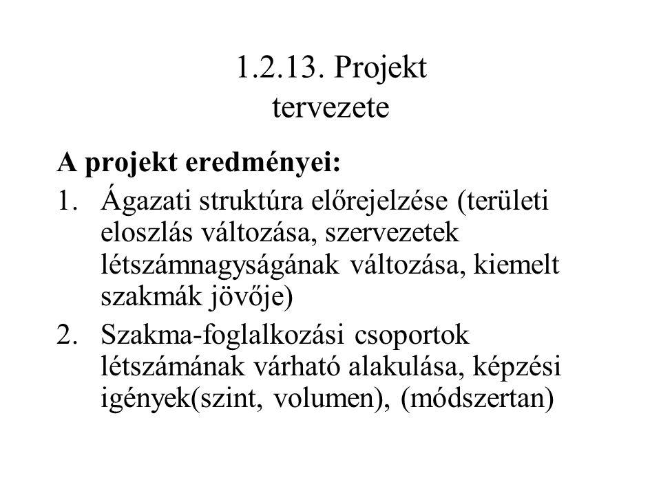 1.2.13. Projekt tervezete A projekt eredményei: 1.Ágazati struktúra előrejelzése (területi eloszlás változása, szervezetek létszámnagyságának változás
