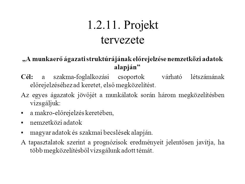 """1.2.11. Projekt tervezete """"A munkaerő ágazati struktúrájának előrejelzése nemzetközi adatok alapján"""" Cél: a szakma-foglalkozási csoportok várható léts"""