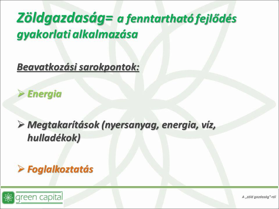 """Zöldgazdaság= a fenntartható fejlődés gyakorlati alkalmazása Beavatkozási sarokpontok:  Energia  Megtakarítások (nyersanyag, energia, víz, hulladékok)  Foglalkoztatás A """"zöld gazdaság -ról"""