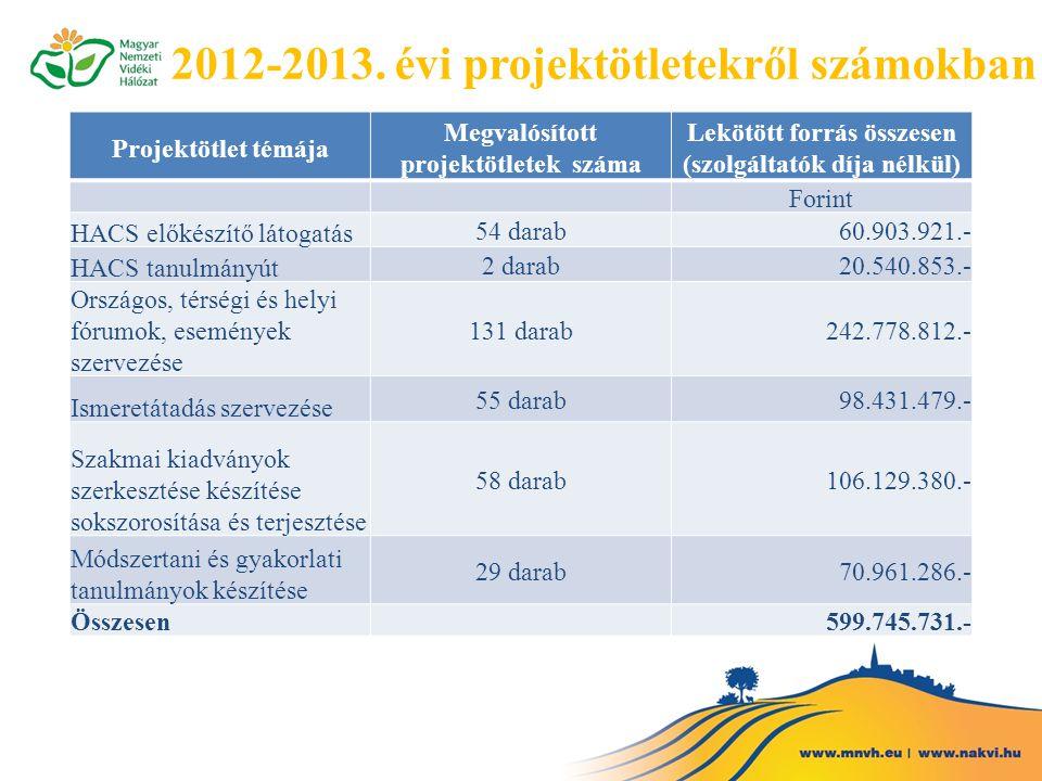 2012-2013. évi projektötletekről számokban Projektötlet témája Megvalósított projektötletek száma Lekötött forrás összesen (szolgáltatók díja nélkül)
