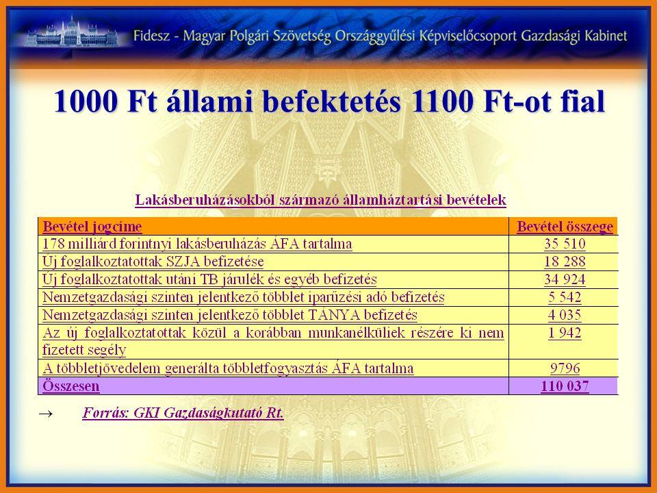 1000 Ft állami befektetés 1100 Ft-ot fial