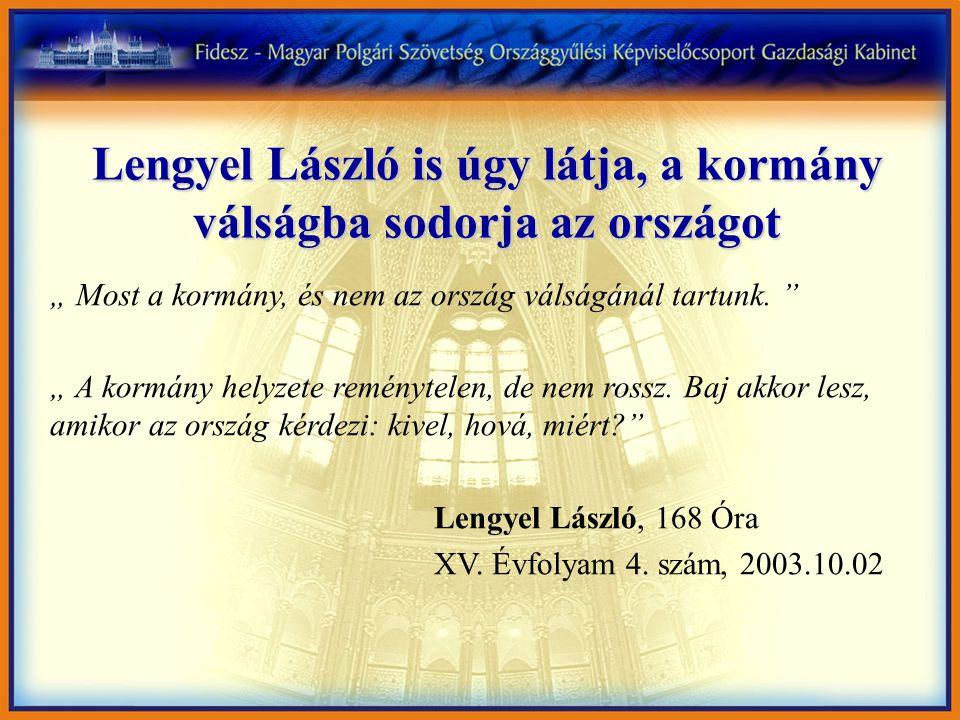 """Lengyel László is úgy látja, a kormány válságba sodorja az országot """" Most a kormány, és nem az ország válságánál tartunk."""
